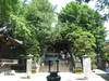 201107101img_0639